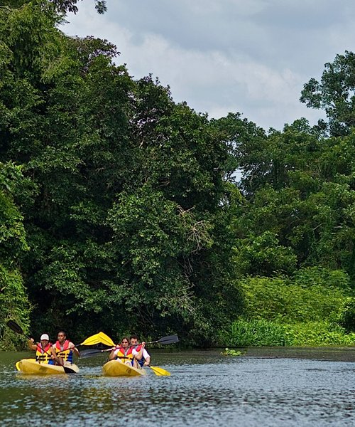 Chagres River Kayaking