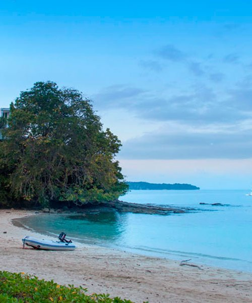 One Day tour to Contadora Island